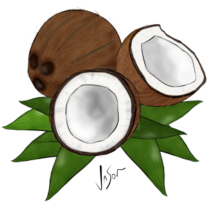Picture of coconut