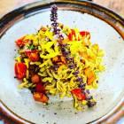 Link to recipe for pumpkin pesto pasta salad
